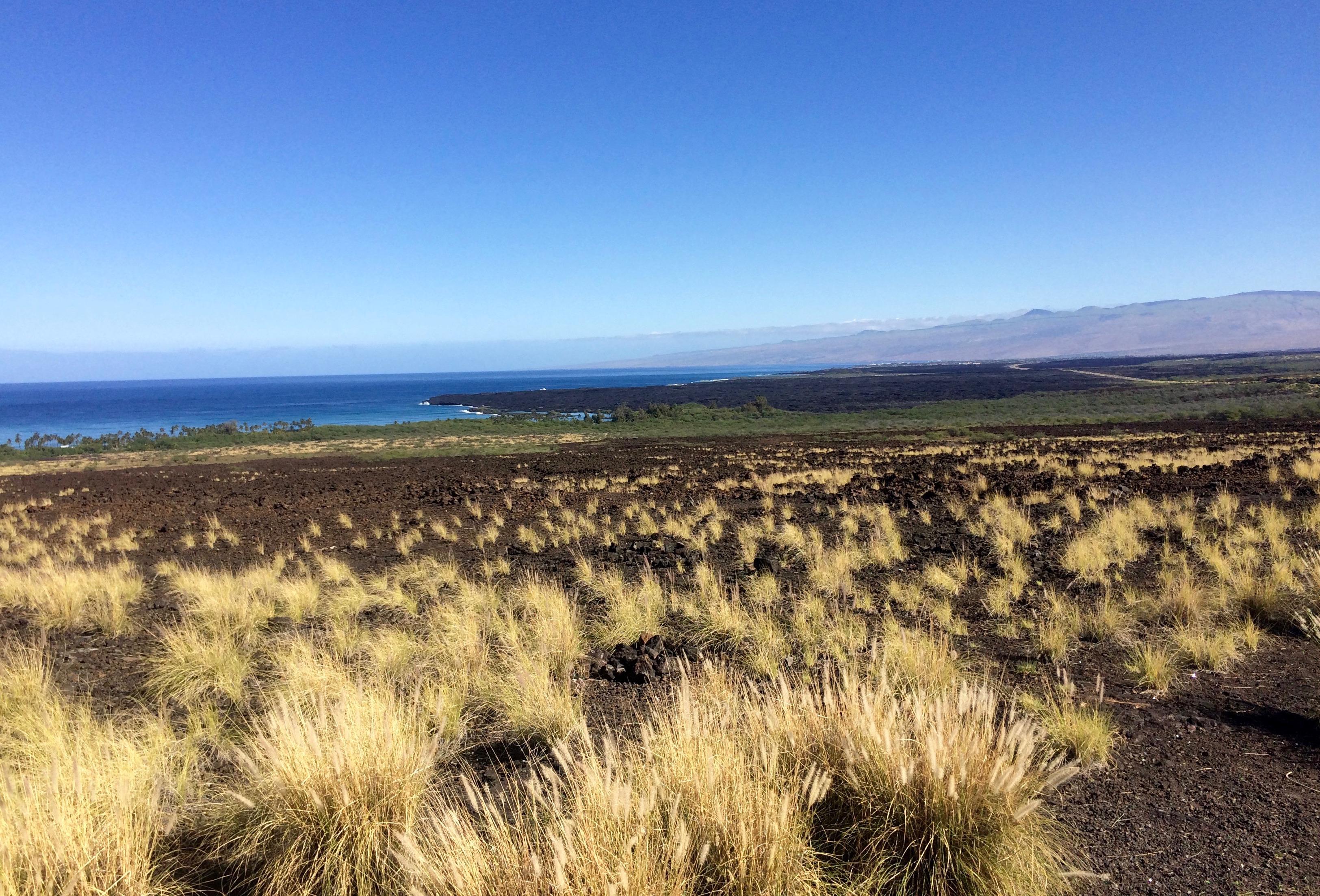 Kohala_volcano